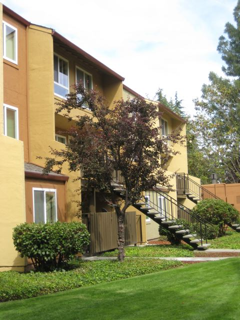 Rancho Luna Fremont See Pics Avail